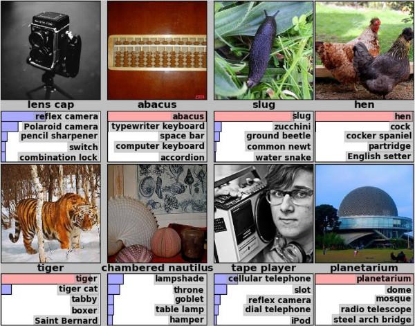 https://danielnouri.org/media/deep-learning-whales-krizhevsky-lsvrc-2012-predictions.jpg